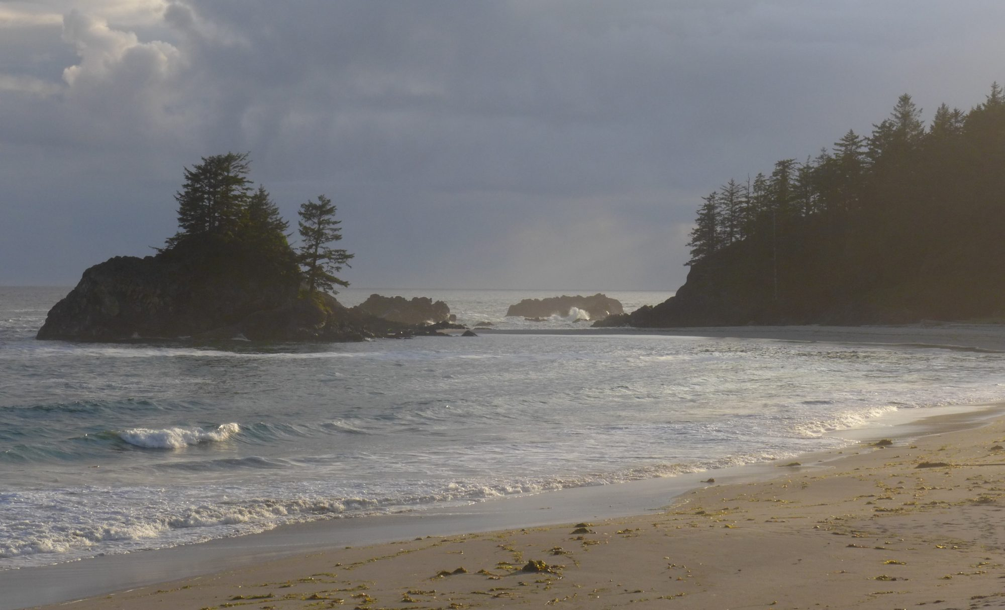Vancouver Island's Secret Coast